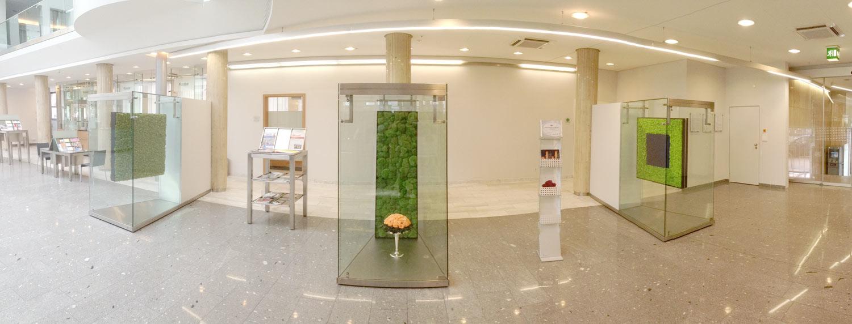 Moosbilder, Collagen und Blumengesteck Heidelberger Volksbank