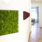 Natur Raumgestaltungs Design mit konserviertem Moosbild