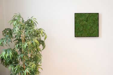 Quadratisches Wandbild aus konserviertem Moos